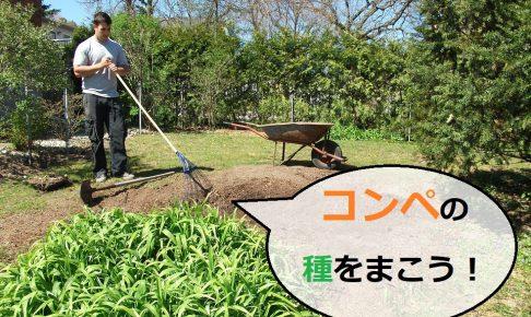 畑で種まきをする男性「コンペの種をまこう」